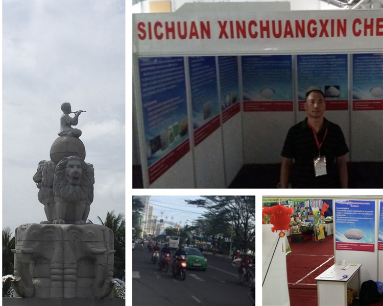 越南化工展